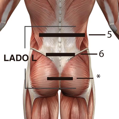 Sin importar donde tengas el padecimiento, realiza la sesión con CORDUS completa, desde la zona cervical hasta el coxis.