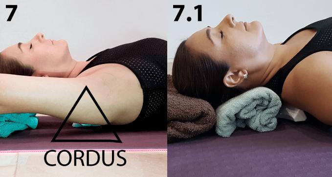 Se recomienda usar un soporte de aprox. 3 o 4 cm de altura (toalla, almohada, libro) debajo de la cabeza.