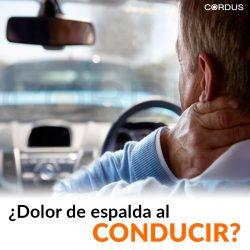 Conducir largas jornadas puede dañar tu espalda
